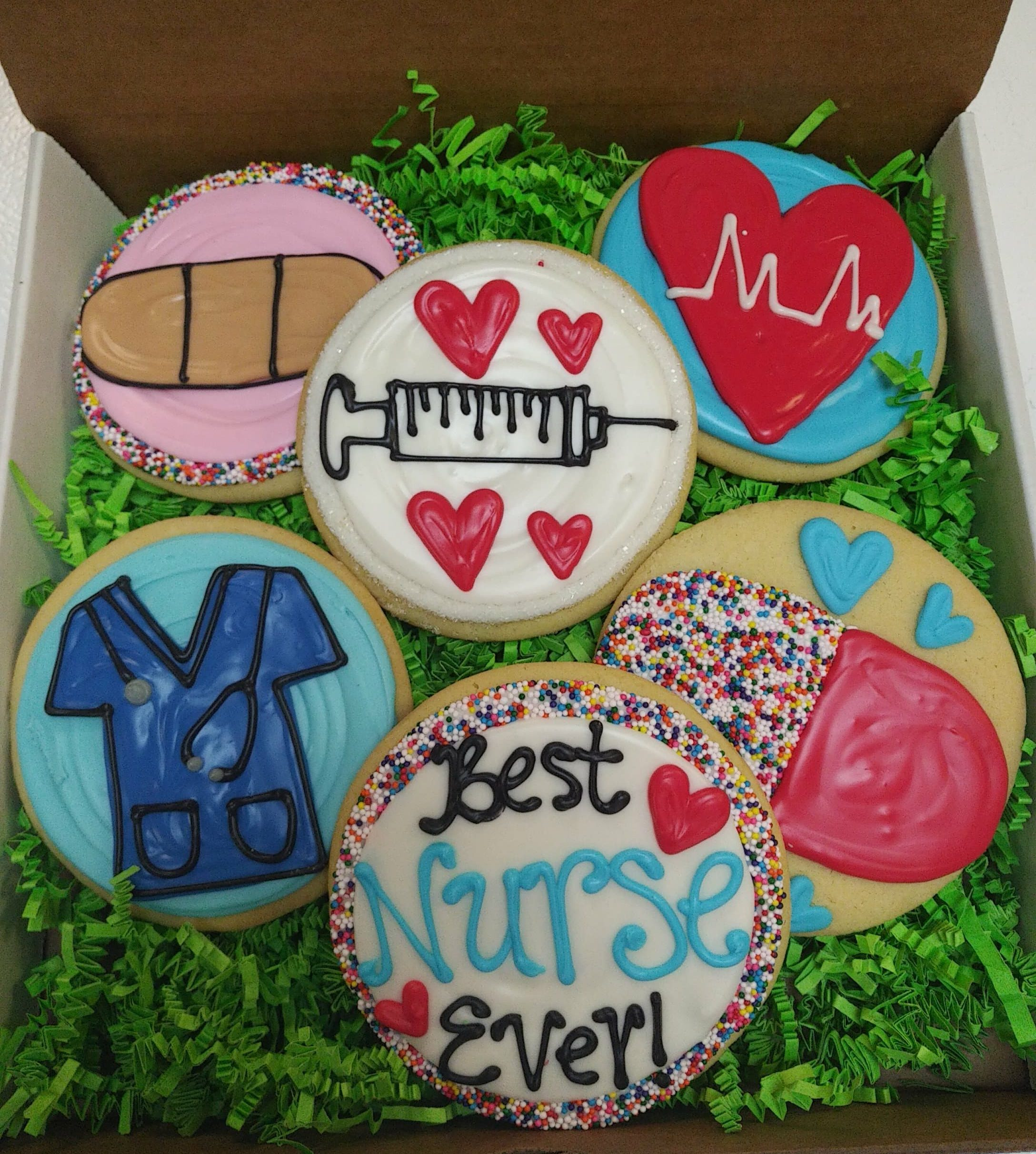 Half Dozen Nurse Decorated Cookies