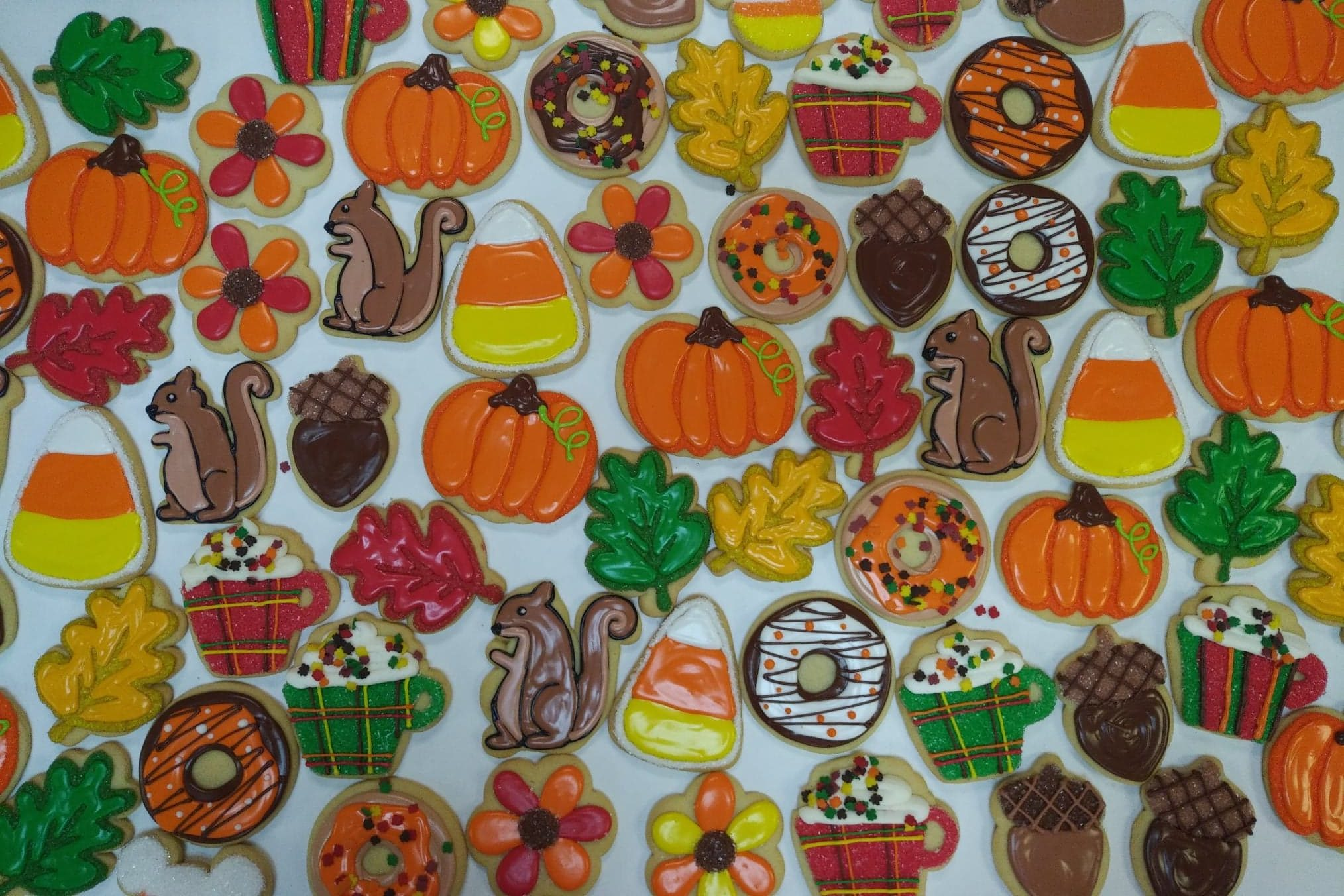 Assorted Fall Decorated Cookies